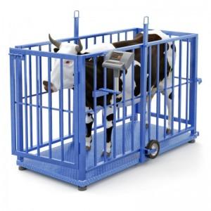 Весы для взвешивания животных (скота)